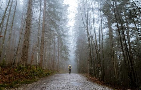 Lone backpacker walking in misty forest